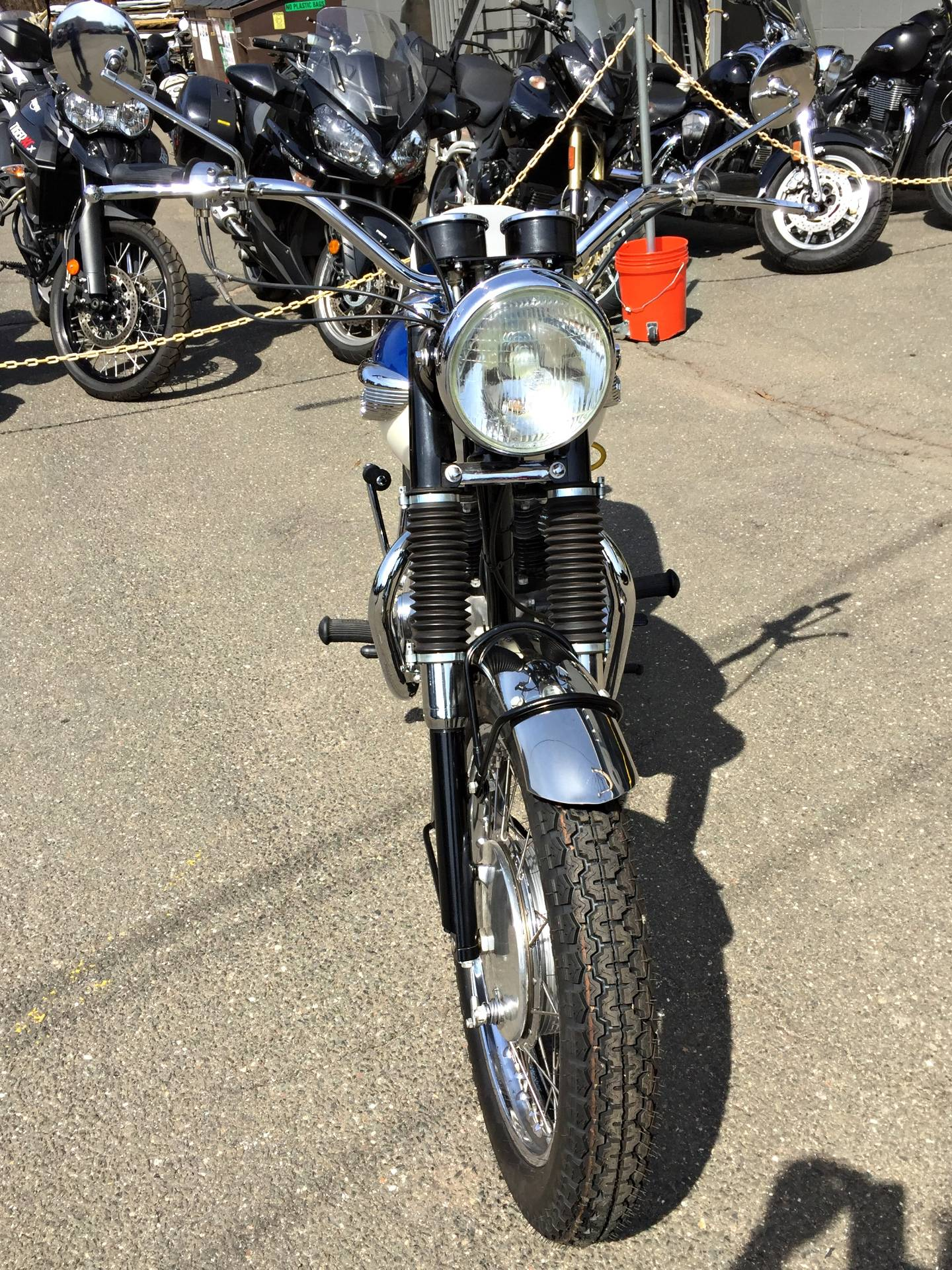 1966 Triumph Bonneville T120R 650 in Enfield, Connecticut