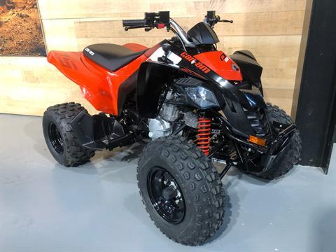2020 Can-Am DS 250 in Enfield, Connecticut