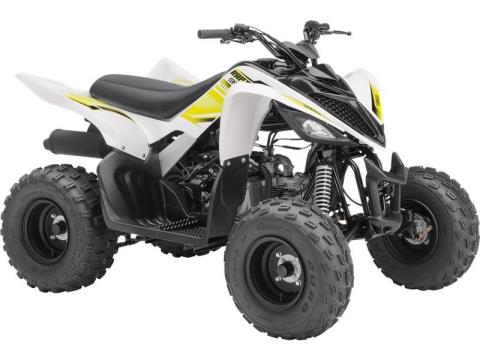 2017 Yamaha Raptor 90 White in Waynesburg, Pennsylvania