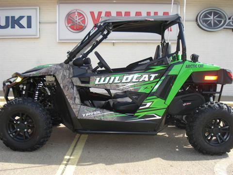 2017 Arctic Cat Wildcat Trail XT EPS in Waynesburg, Pennsylvania