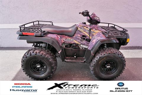 2004 Polaris SPORTSMAN 700 in Tampa, Florida - Photo 6