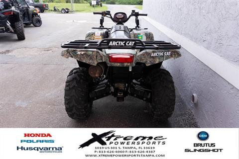 2013 ARTIC CAT 500 XT 4X4 in Tampa, Florida - Photo 4