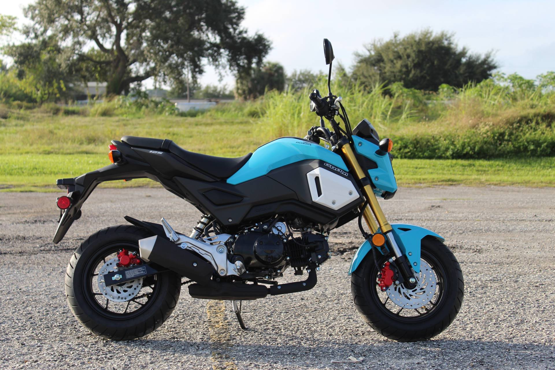 2020 Honda Grom in Sarasota, Florida - Photo 7