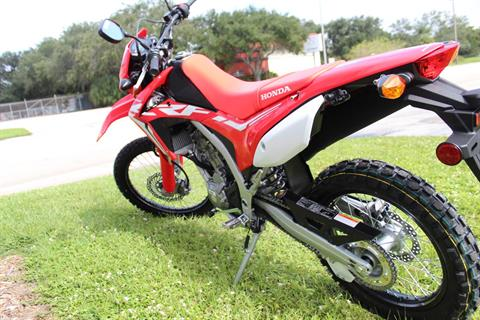 2020 Honda CRF250L in Sarasota, Florida - Photo 6
