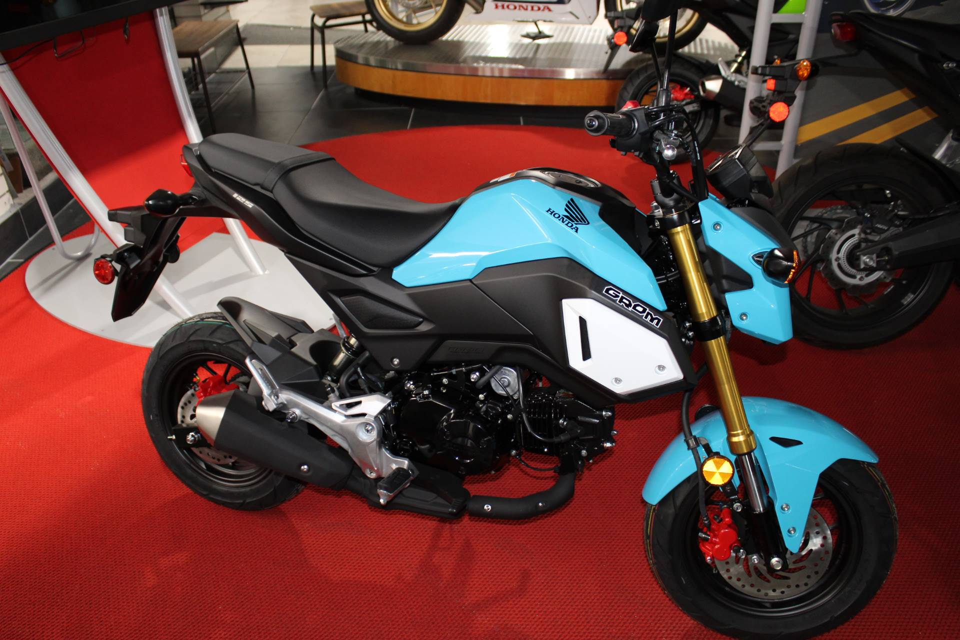 2019 Honda Grom in Sarasota, Florida - Photo 1
