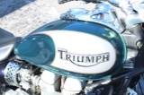 2005 Triumph America in Sarasota, Florida - Photo 7