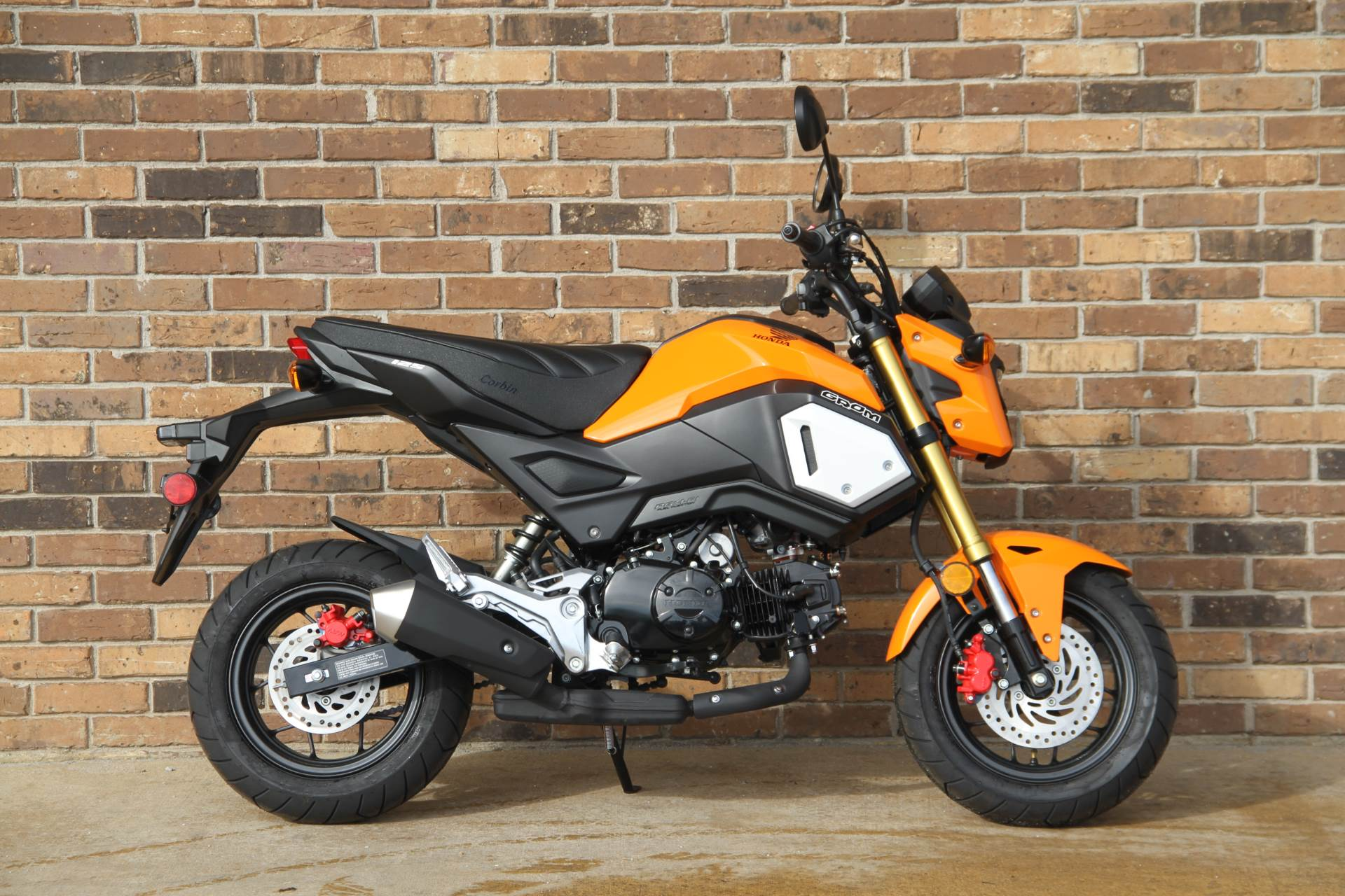 2019 Honda Grom in Hendersonville, North Carolina - Photo 1