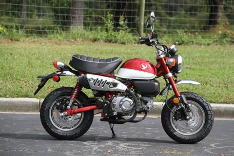 2020 Honda Monkey in Hendersonville, North Carolina - Photo 9