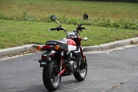 2020 Honda Monkey in Hendersonville, North Carolina - Photo 13