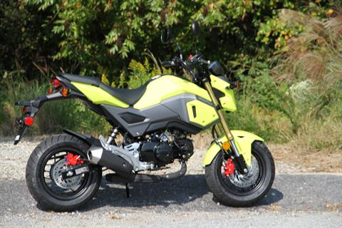 2018 Honda Grom in Hendersonville, North Carolina