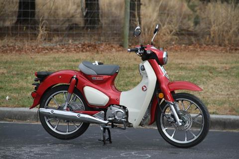 2020 Honda Super Cub C125 ABS in Hendersonville, North Carolina - Photo 6