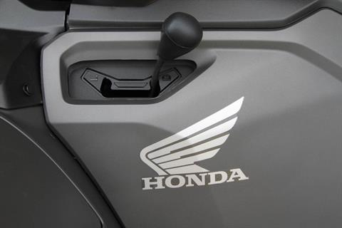 2019 Honda FourTrax Foreman Rubicon 4x4 Automatic DCT EPS Deluxe in Hendersonville, North Carolina - Photo 14