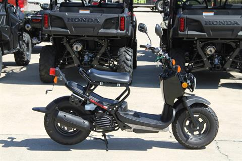 2020 Honda Ruckus in Hendersonville, North Carolina - Photo 1