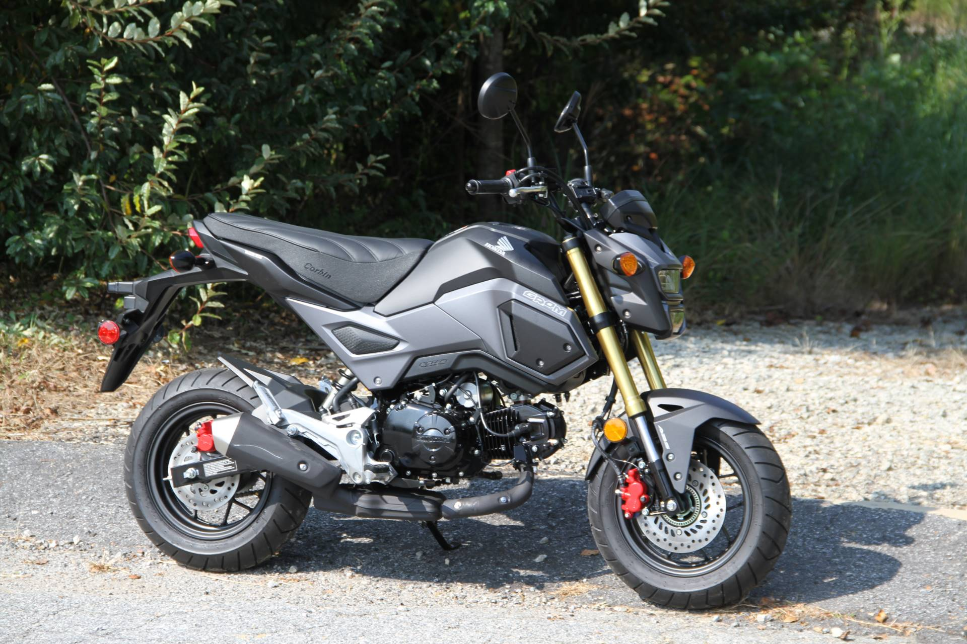 New 2018 Honda Grom ABS Motorcycles in Hendersonville NC