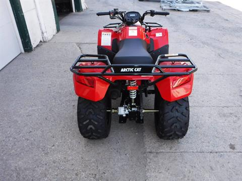 2019 Arctic Cat Alterra 150 in Mazeppa, Minnesota - Photo 2