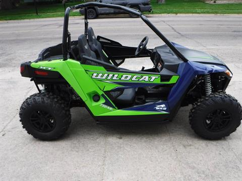 2019 Arctic Cat Wildcat Trail XT in Mazeppa, Minnesota - Photo 1