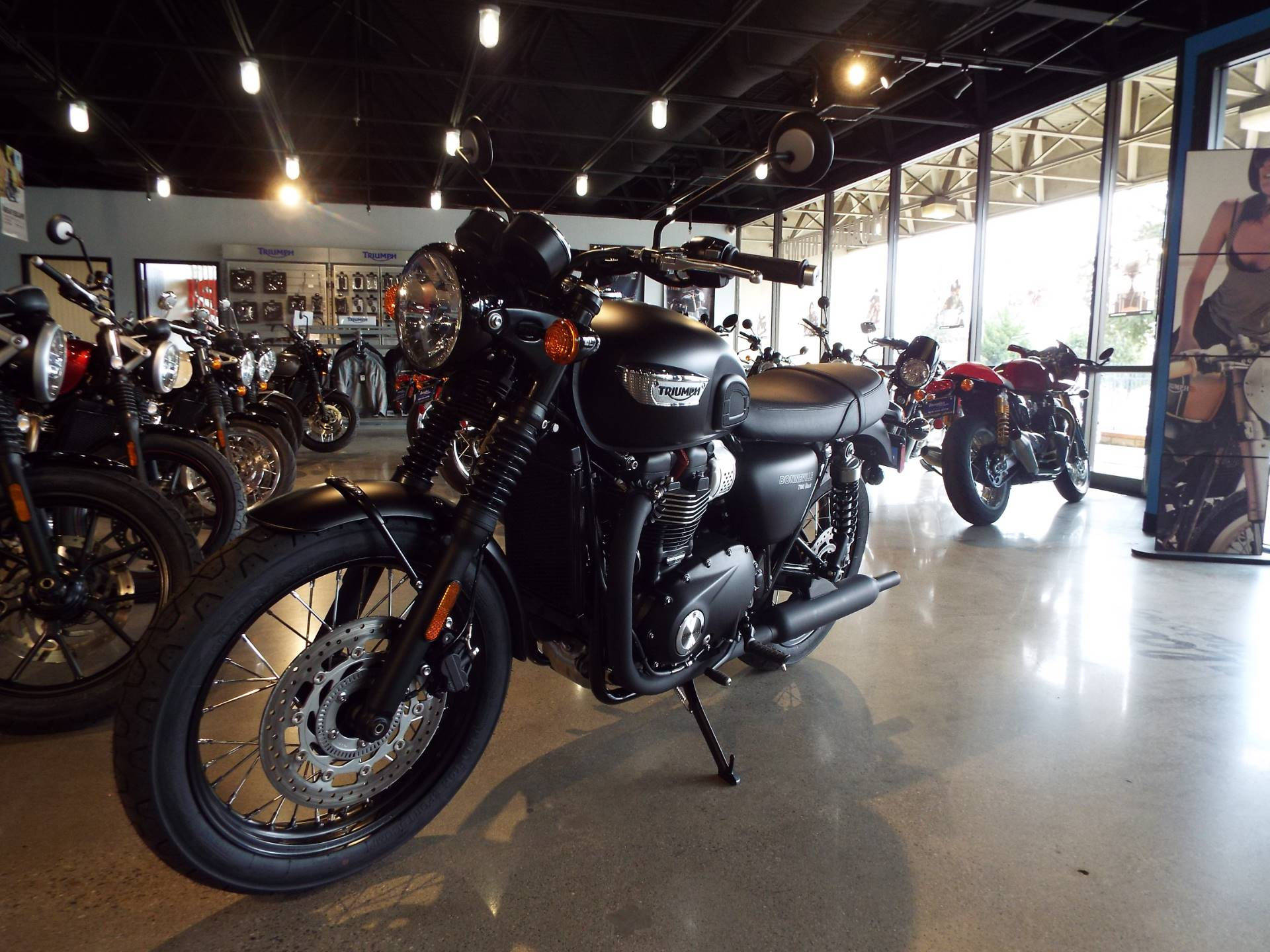 2017 Triumph Bonneville T100 Black in San Bernardino, California