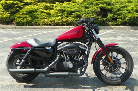 2012 Harley-Davidson Sportster® Iron 883™ in Johnstown, Pennsylvania