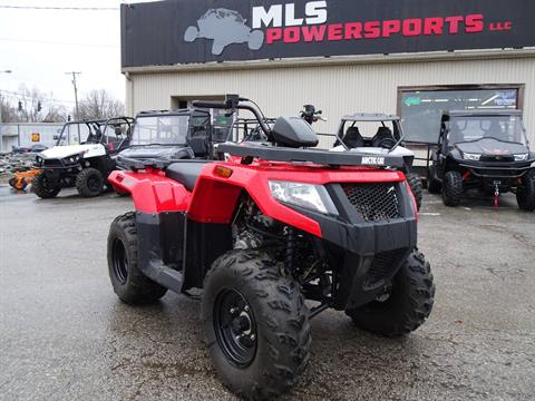 2017 Arctic Cat Alterra 300 in Georgetown, Kentucky