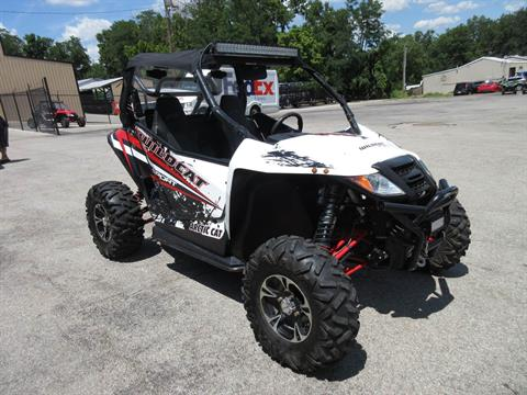 2015 Arctic Cat Wildcat™ Sport Limited EPS in Georgetown, Kentucky