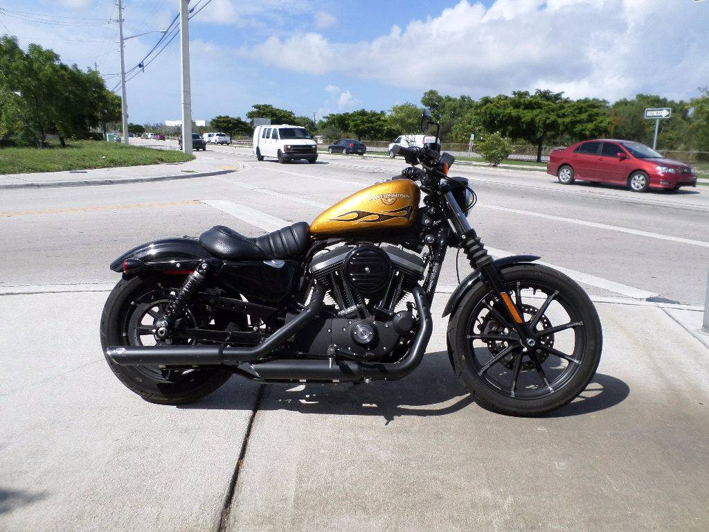 2016 Harley-Davidson Iron 883™ in Pompano Beach, Florida