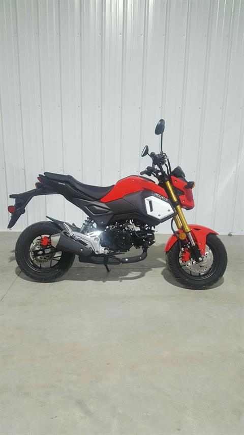 2019 Honda Grom in Cedar Falls, Iowa - Photo 1