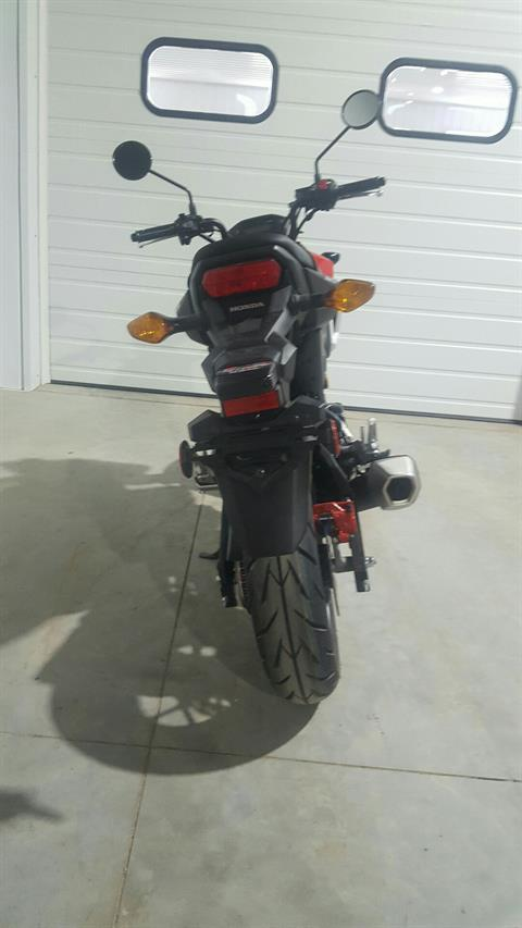2019 Honda Grom in Cedar Falls, Iowa - Photo 2