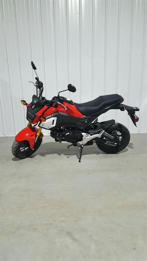 2019 Honda Grom in Cedar Falls, Iowa - Photo 4