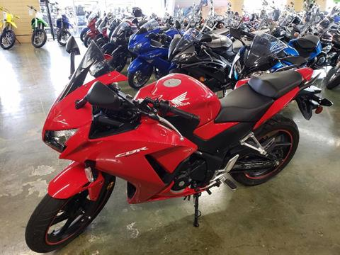 2015 Honda CBR®300R in Louisville, Tennessee