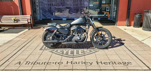 2019 Harley-Davidson Iron 883 in Orlando, Florida - Photo 1