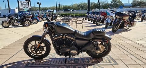 2019 Harley-Davidson Iron 883 in Orlando, Florida - Photo 2