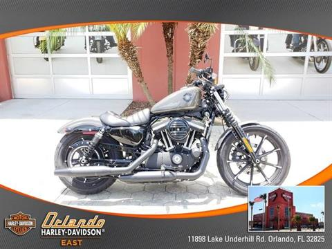 2019 Harley-Davidson Iron 883™ in Orlando, Florida - Photo 12