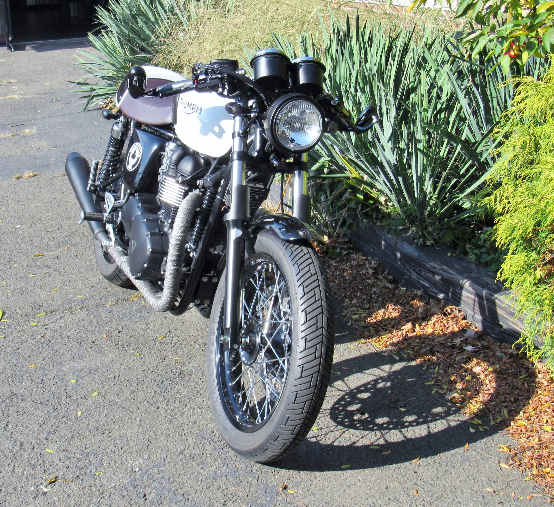 2015 Triumph Thruxton Ace in New Haven, Connecticut - Photo 1