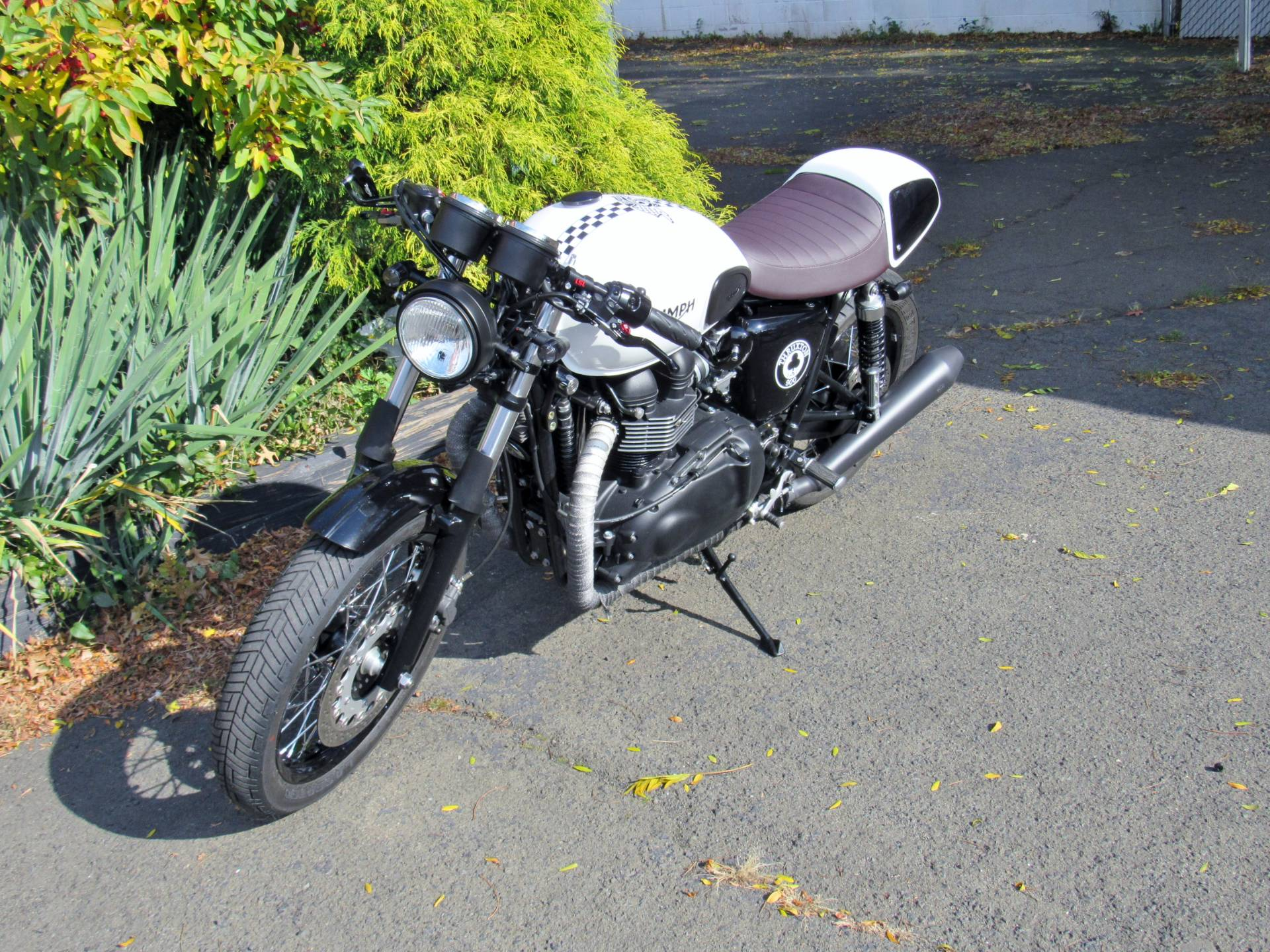 2015 Triumph Thruxton Ace in New Haven, Connecticut - Photo 2