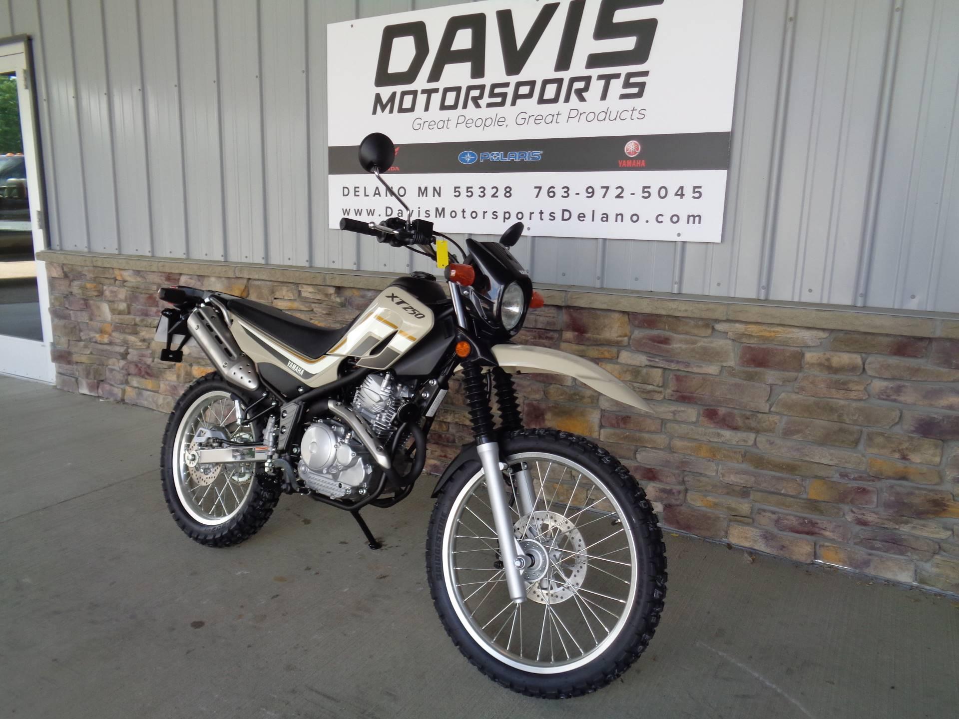 2019 Yamaha XT250 in Delano, Minnesota