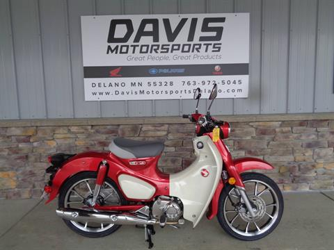2021 Honda Super Cub C125 ABS in Delano, Minnesota - Photo 1