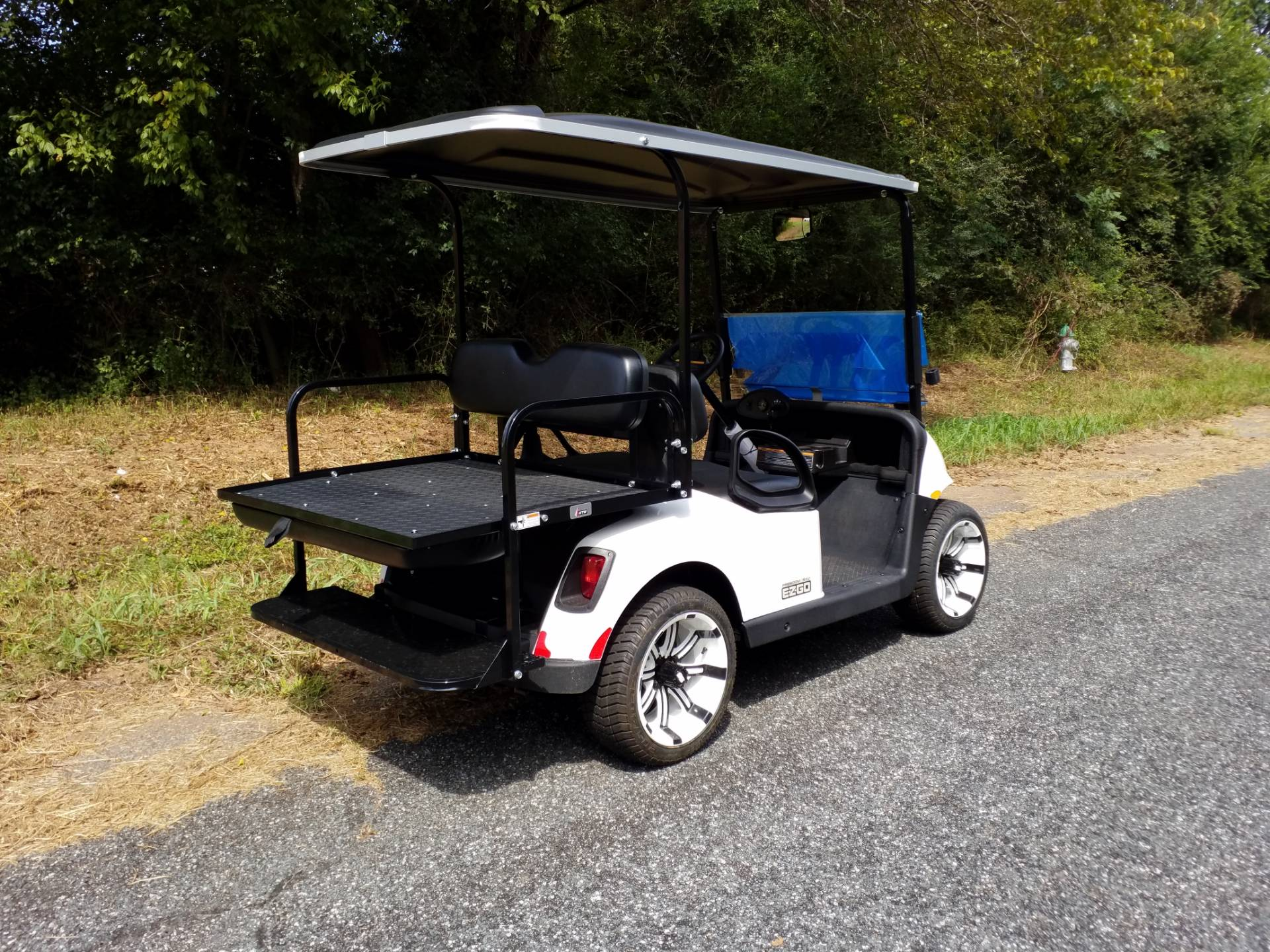 2018 E-Z-Go Freedom RXV Electric in Covington, Georgia