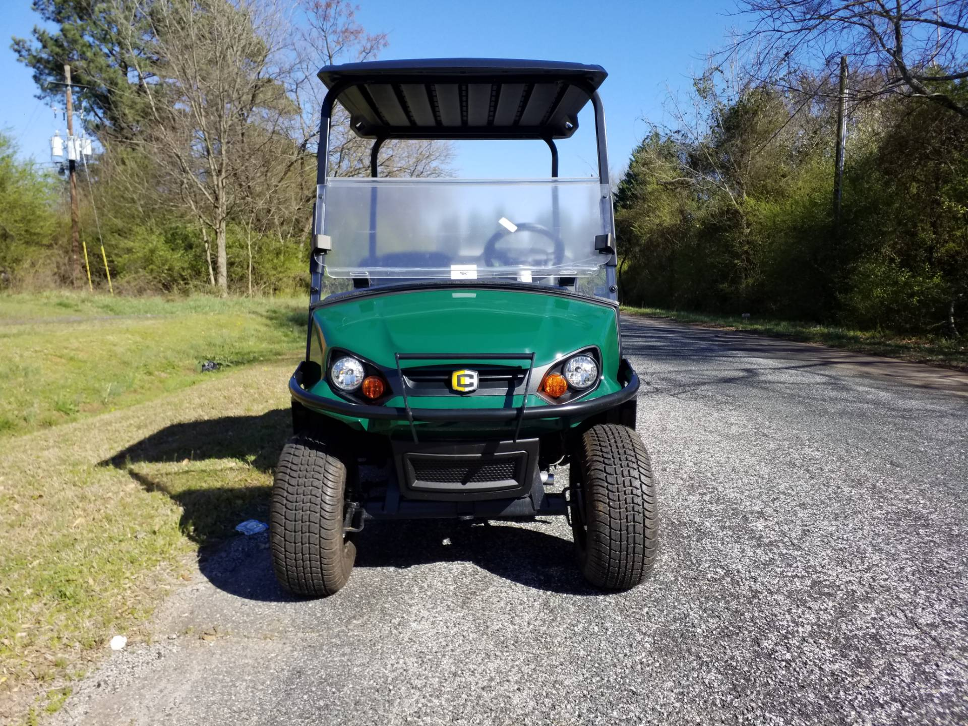 2018 Cushman Hauler Pro Electric in Covington, Georgia - Photo 3