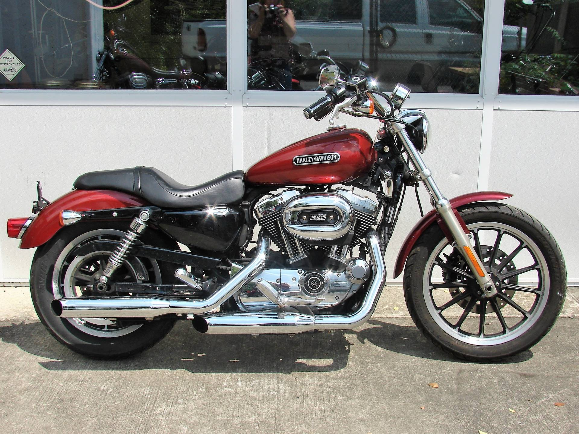 2009 Harley-Davidson XL Sportster 1200cc in Williamstown, New Jersey - Photo 1
