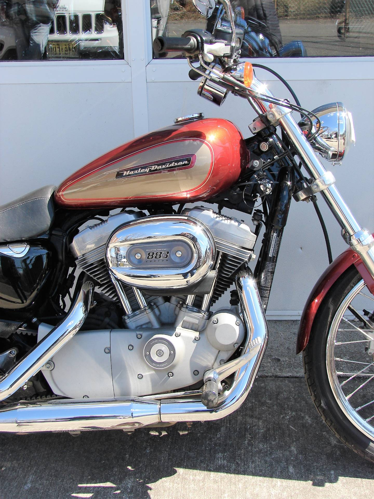 2009 Harley-Davidson XL 883 Sportster Custom in Williamstown, New Jersey - Photo 3