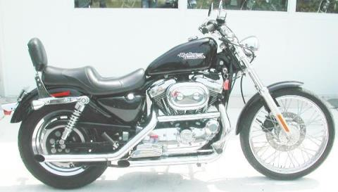 2002 Harley-Davidson 1200 SPORTSTER in Williamstown, New Jersey - Photo 10