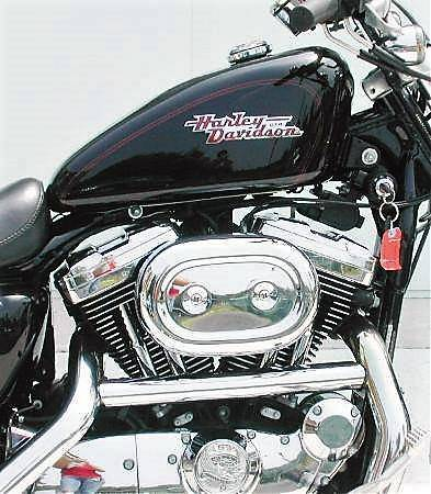 2002 Harley-Davidson 1200 SPORTSTER in Williamstown, New Jersey - Photo 6