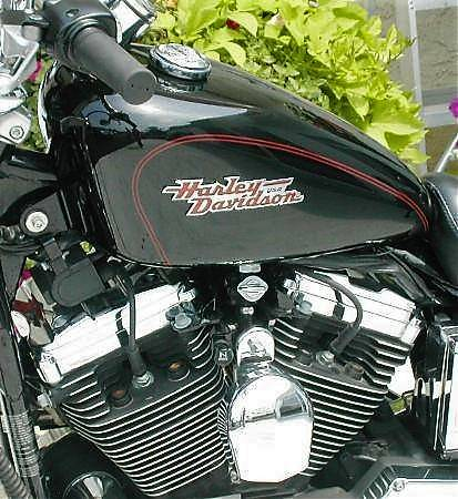 2002 Harley-Davidson 1200 SPORTSTER in Williamstown, New Jersey - Photo 8