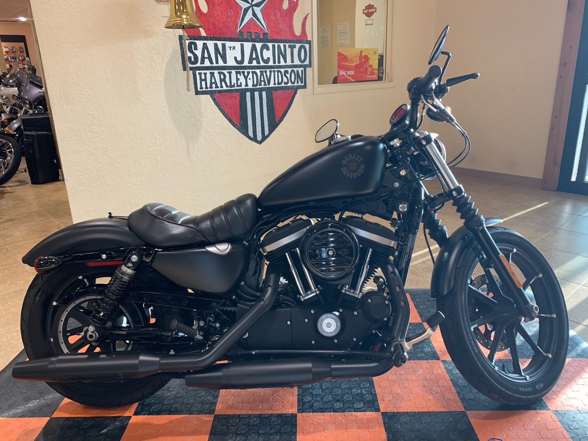 2019 Harley-Davidson SPORTSTER 883 in Pasadena, Texas - Photo 1