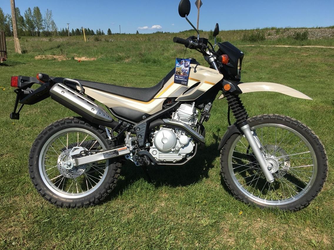2019 Yamaha XT250 in Sandpoint, Idaho