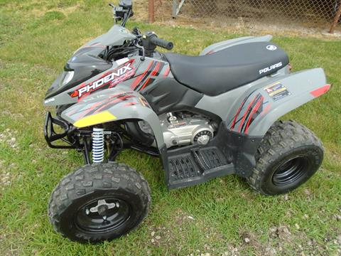 2019 Polaris Phoenix 200 in Lake Mills, Iowa - Photo 1