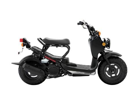 2015 Honda Ruckus® in South Hutchinson, Kansas