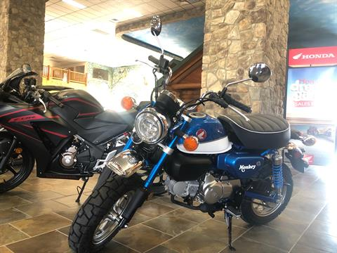 2021 Honda Monkey in Honesdale, Pennsylvania - Photo 1