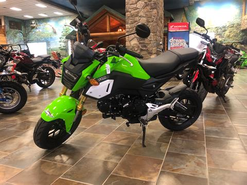 2020 Honda Grom in Honesdale, Pennsylvania - Photo 1