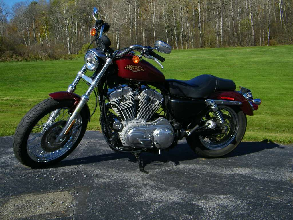 used 2009 harley davidson sportster 883 low motorcycles in galeton pa. Black Bedroom Furniture Sets. Home Design Ideas